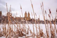 Central Park dopo la neve Strom Linus Fotografia Stock
