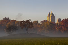 Central Park early morning fog Royalty Free Stock Photography