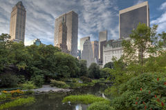 Central Park in the early morning at the pond Stock Images