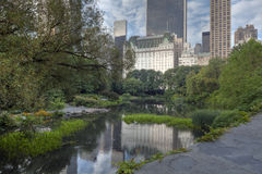 Central Park in the early morning at the pond Royalty Free Stock Photo