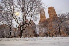 Central Park efter snön Strom Linus Royaltyfria Foton