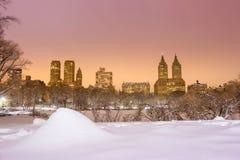 Central Park efter snön Strom Linus Arkivbilder