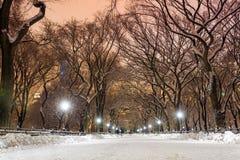 Central Park efter snön Strom Linus Royaltyfri Foto