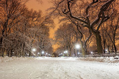Central Park efter snön Strom Linus Arkivfoton