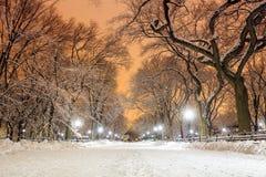 Central Park efter snön Strom Linus Fotografering för Bildbyråer