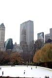 Central Park em dezembro Imagens de Stock