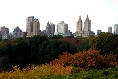 Central Park em New York Imagem de Stock