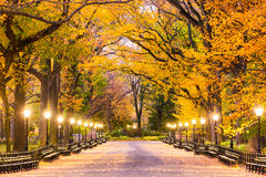Central Park em New York City imagens de stock royalty free