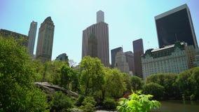 Central Park em New York video estoque