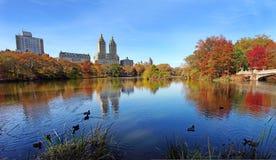 Central Park en el día soleado, New York City Imagen de archivo libre de regalías