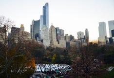 Central Park en el invierno, New York City stock de ilustración