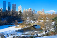 Central Park en hiver Photos stock