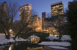 Central Park en invierno Foto de archivo libre de regalías