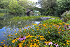 Central Park en la charca imagen de archivo libre de regalías
