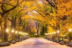 Central Park en New York City imágenes de archivo libres de regalías
