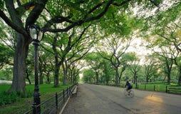 Central Park en Nueva York Imagen de archivo libre de regalías