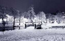 Central Park en Riga, Letonia en la noche del invierno Fotografía de archivo libre de regalías