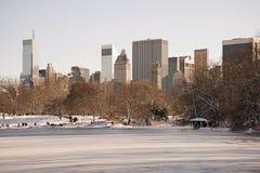 Central Park en Uit het stadscentrum Manhattan in de Winter Stock Fotografie