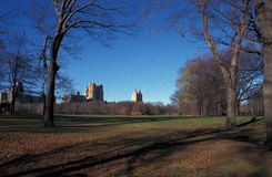 Central park in fall royalty free stock image