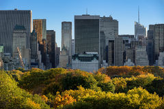 Central Park Fall Foliage and Midtown Manhattan Skyscrapers, New York Royalty Free Stock Photos