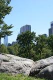 Central Park fjäder Arkivfoto