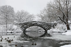 A Central Park Frozen Lake And Bridge In The Snow. Winter frozen lake and snowfall on a bridge in Central Park, NY Royalty Free Stock Images