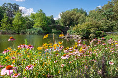 Central Park Garden View Royalty Free Stock Image