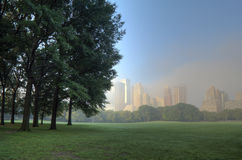 Central park great lawn. In the early morning Stock Photos
