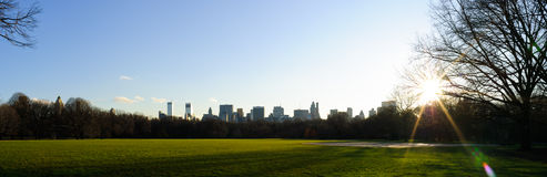 Central park lawn Stock Photography