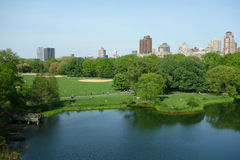 Central Park in New York City Stock Image