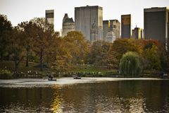 Central Park Great Pond in the Fall Royalty Free Stock Photo