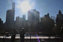 Central Park het Schaatsen NYC stock fotografie