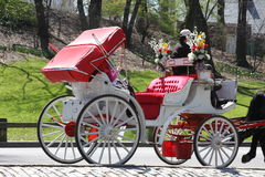 Central Park Horse carriage, New York Royalty Free Stock Photos