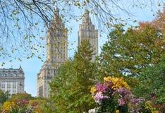 Central Park i hösten manhattan nya USA york Arkivbild