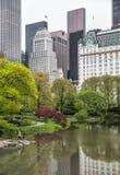 Central Park i Manhattan linia horyzontu w NYC Fotografia Stock