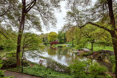 Central Park i Manhattan linia horyzontu w NYC Zdjęcie Royalty Free
