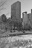 Central Park i vinter. New York. Royaltyfri Foto