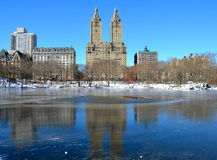 Central Park i vintern, NYC Royaltyfria Foton