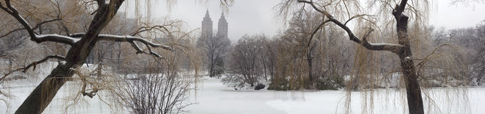 Central Park after ice storm Royalty Free Stock Photos