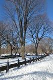 Central Park il 24 gennaio 2016, NYC, U.S.A. Fotografia Stock Libera da Diritti