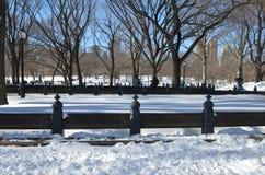 Central Park il 24 gennaio 2016, NYC, U.S.A. Immagini Stock Libere da Diritti