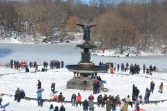 Central Park il 24 gennaio 2016, NYC, U.S.A. Immagini Stock