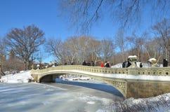 Central Park il 24 gennaio 2016, NYC, U.S.A. Fotografie Stock Libere da Diritti