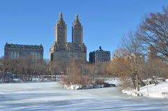 Central Park il 24 gennaio 2016, NYC, U.S.A. Immagine Stock Libera da Diritti