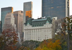 Central Park il 10 novembre 2014 in Manhattan, New York, U.S.A. Immagini Stock