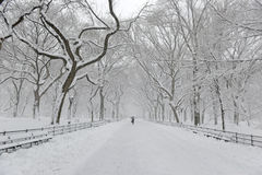 Central Park im Schnee nach Schneesturm, New York City Stockfotografie