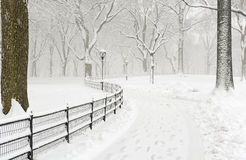 Central Park im Schnee nach Schneesturm, New York City Lizenzfreie Stockfotos