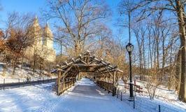 Central Park im Winter Stockfotografie