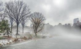 Central Park, invierno de New York City imagenes de archivo