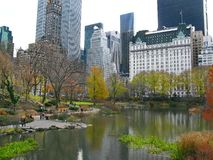 Central Park and its beautiful colors in Autumn and Winter. New Stock Photo